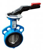 Butterfly valve type M1A